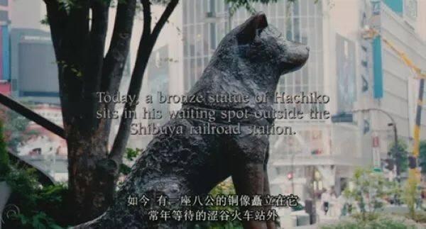 一次弄懂JR「山手线」,带你轻松游遍东京! 关于签证哪些事 第42张